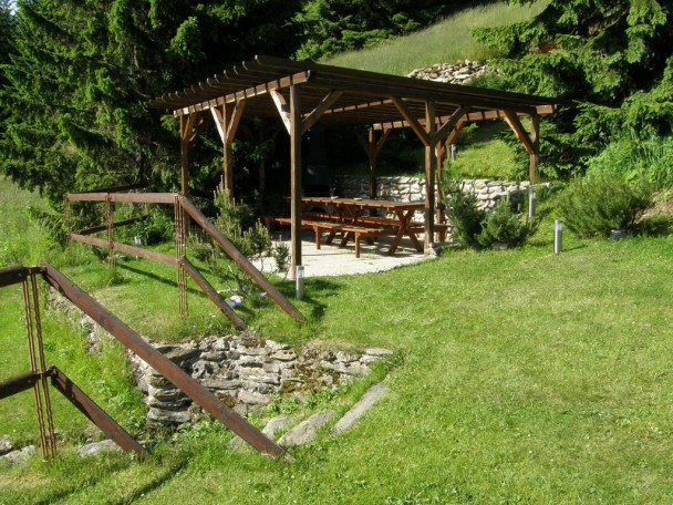 nice shed for barbeque