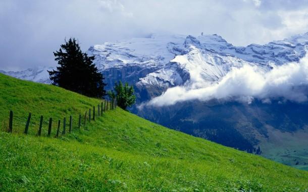 green meadow mountains