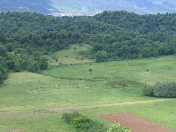 Agricultural land in Bulgaria