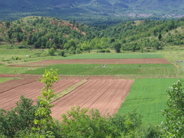 agriculture in Bulgaria